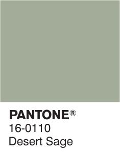 the ideal sage green